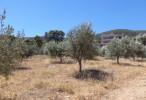 Продажа земли на Саламине Греция.